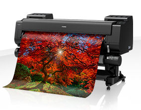 Large Format - 2A0/Canon: Canon, iPF, PRO-6000S, 60, 2A0, 8, Colour, Graphics, Printer,