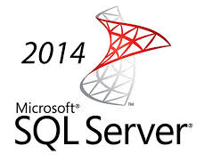 SQL, SERVER, ENTERPRISE, CORE, LICENSE+SOFTWARE, ASSURANCE, OLV, 1Y, 2, CORE,