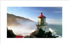 LG, VIDEO, WALL, (VL5F), 49, FHD, LED, 450NITS, HDMI, DVI, DP, BEZEL(TL/T-2.3MM, R/B-1.2MM),