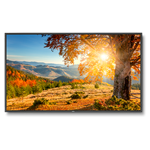 NEC, 75, LED, Backlit, High, Brightness, Display,