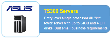 Asus TS300 Servers