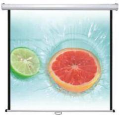 Dinon, Manual, Screen, 79, (160*120cms), 4:3,