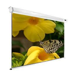 SG, Professional, Rear, Projection, Screen, 4:3, 200, (3m, x, 4m),