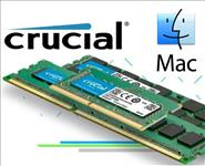 Crucial, DDR4, 16GB, 2400Mhz, (PC-19200), CL17, DR, x8, Unbuffered, Non-ECC, SODIMM, for, Mac, 260pin, [CT16G4S24AM],
