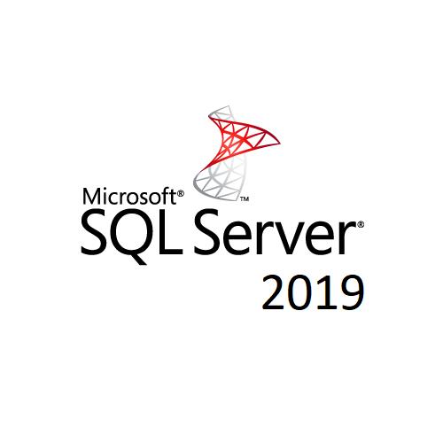 MICROSOFT, SQLCAL, 2019, SNGL, OLP, 1LICENSE, NOLEVEL, USRCAL,